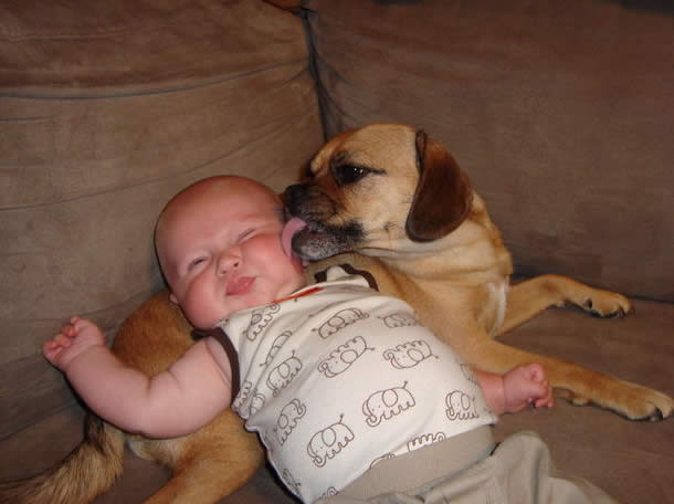 Kids and Pets - So much nicer to think about than politicians